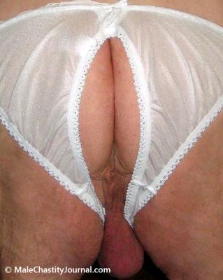 Lion's Crotchless Panties